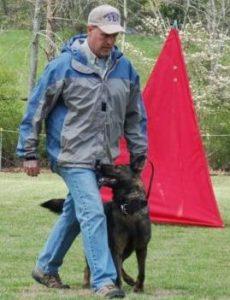 German Shepherd Breeder in Tennessee | Sequoyah German Shepherds