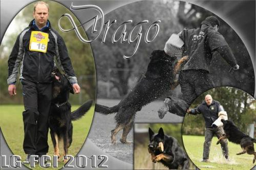 Drago-vom-Patriot-Collage4