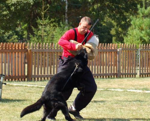 Ken9-10-11IllinoisSDAtrial9-2011 068